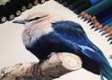 hiper-realismo-arte-com-lapis-de-cor-marcadores-e-tinta-cover  Hiper-realismo: arte das boas com lápis de cor, marcadores e tinta hiper realismo arte com lapis de cor marcadores e tinta cover 125x90